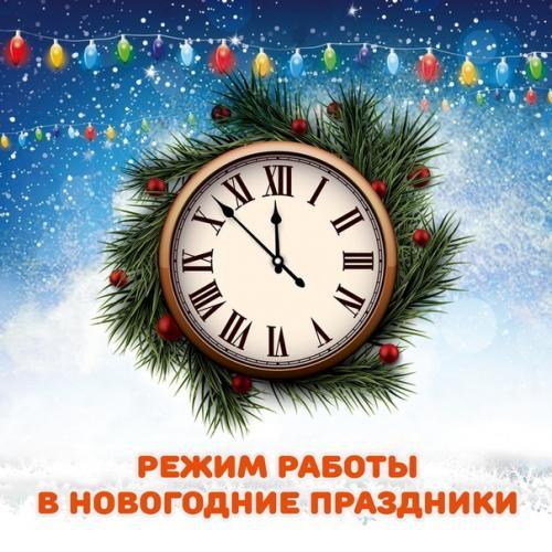 График работы интернет-магазина в Новогодние праздники